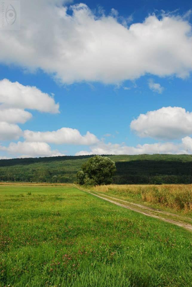 w drodze na Górę Kamieńską  #Łódzkie #voyage #Polska #podróże