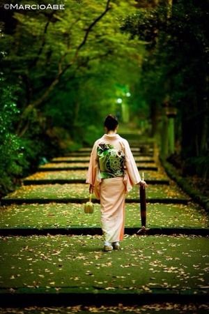 和服姿|じゃまかんばん『日本と世界の伝統写真日記』