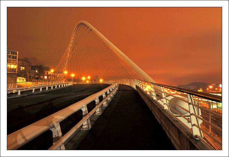 Calatrava Bridge - Liege Train Station