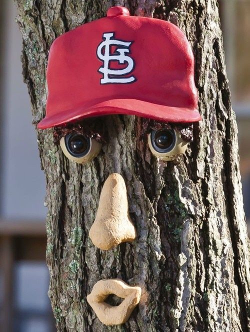 d2373f2240f St. Louis Cardinals Forest Face