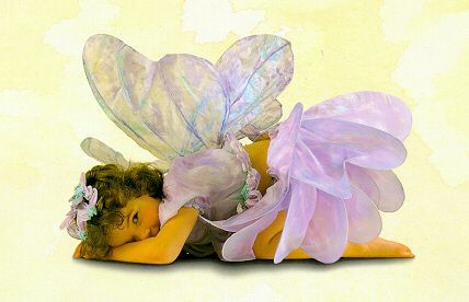 Anne Geddes Fairy Sweetheart
