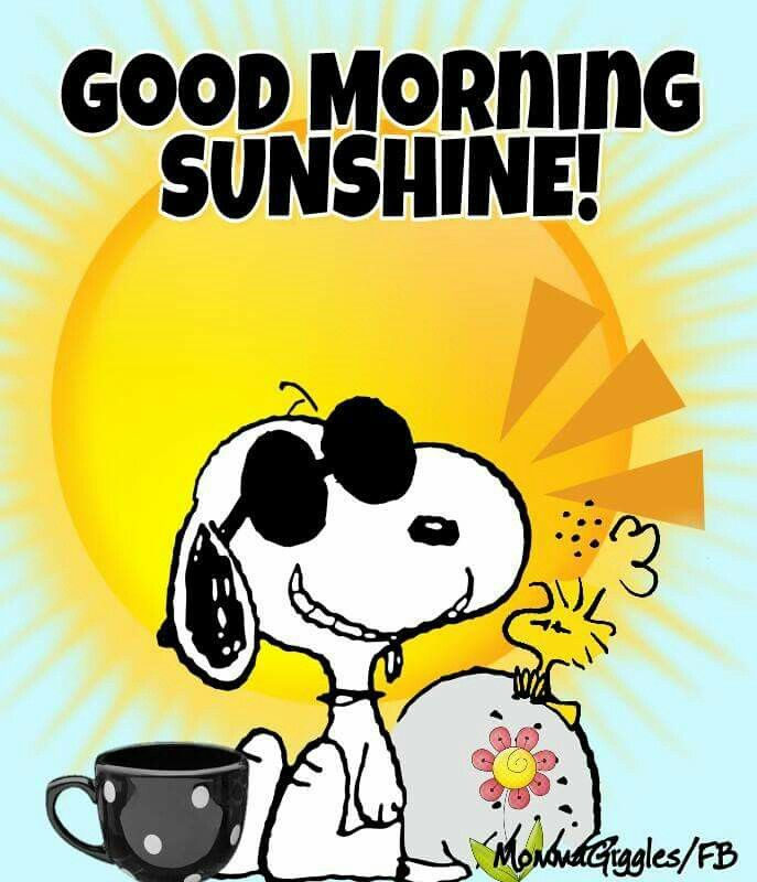 Good Morning, Sunshine - Snoopy Sitting on the Ground Wearing Sunglasses Next to a Rock Where Woodstock Is Sitting With the Sun Behind Them