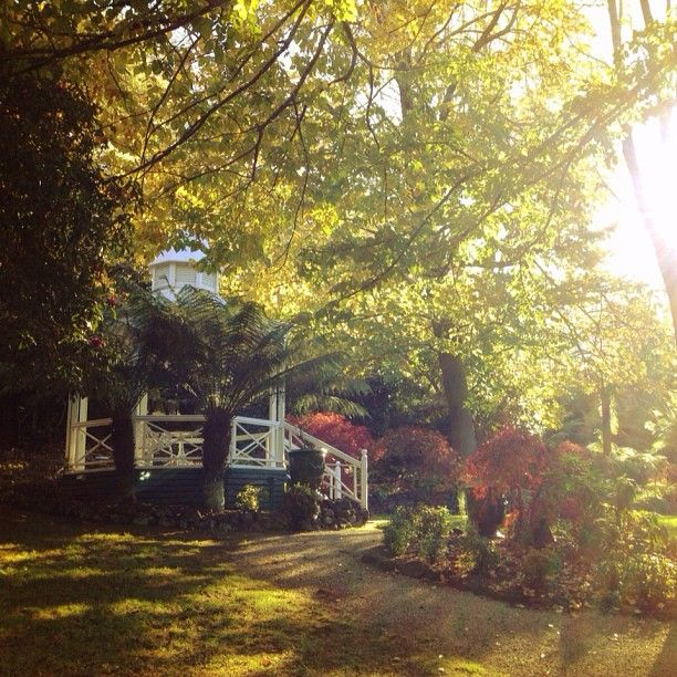 Our gazebo basking in the glorious autumn sunshine :: Photo by Nathania Springs Receptions :: Dandenong Ranges, Victoria, Australia