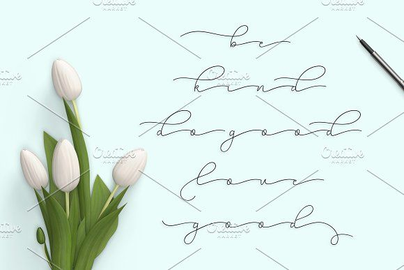 Sehia Script Calligraphy & Monoline by Jamalodin on @creativemarket