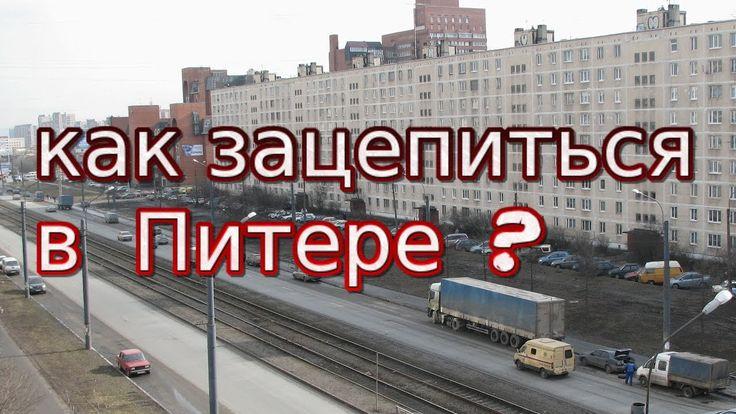 Сколько денег надо для переезда в Питер: как дешево переехать в СПб
