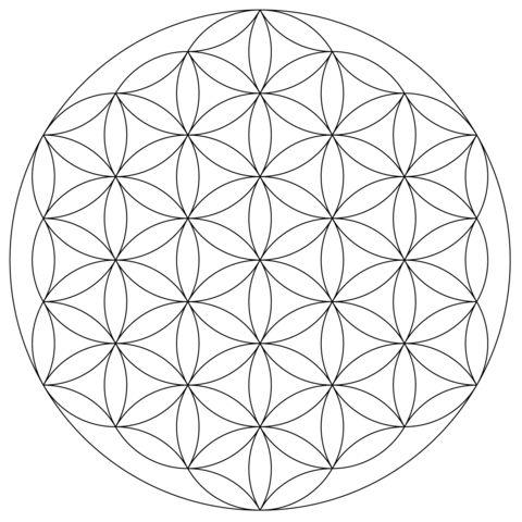 Lebensblumen Mandala Ausmalbild
