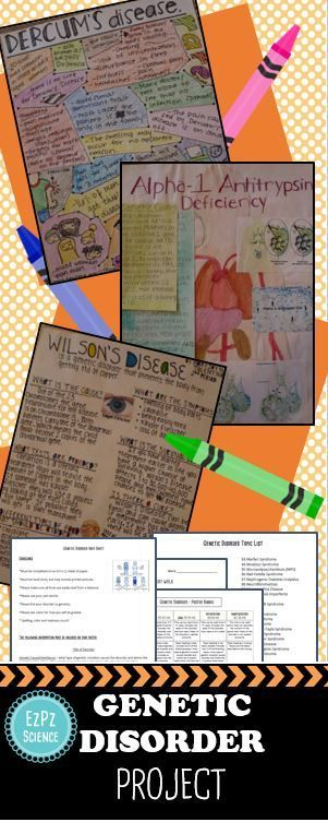 Have your students learn about various genetic disorders with this genetic disorder project. Each student will do research and create a genetic disorder iinfo poster.