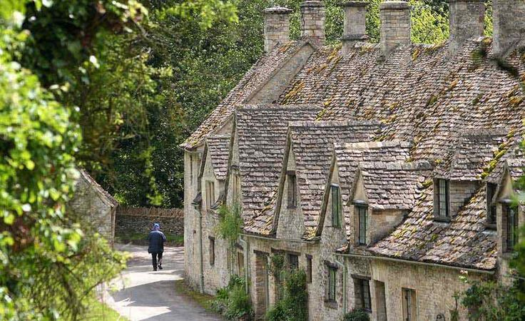 A row of charming cottages in a leafy lane