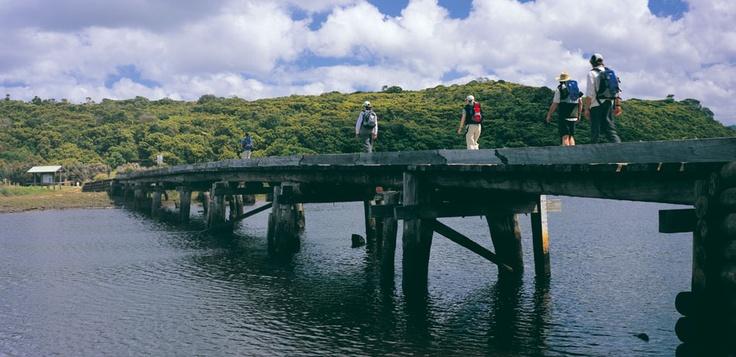Aire River, Otways National Park Victoria