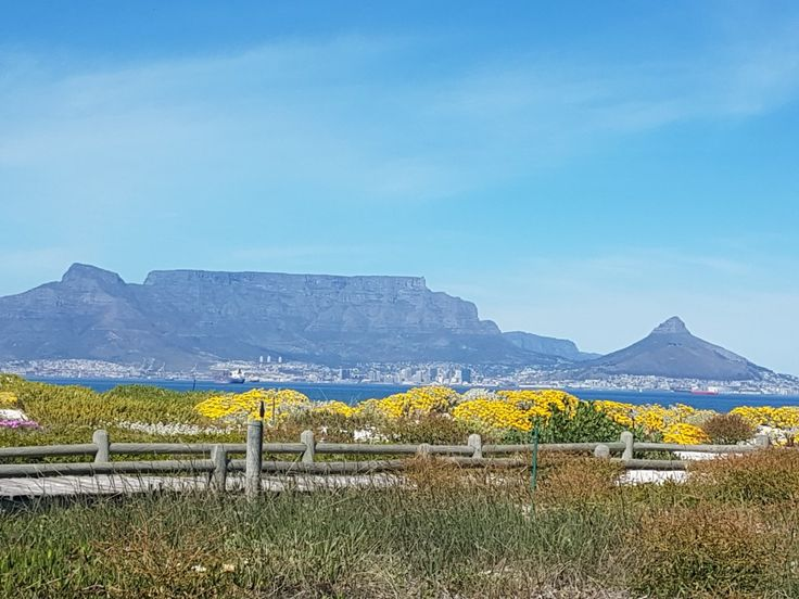 The iconic Table Moutain, Cape Town