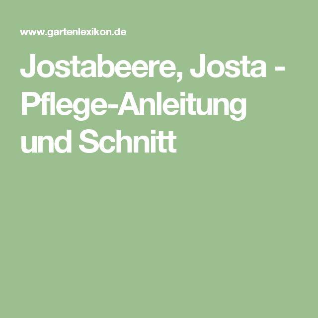 Jostabeere, Josta - Pflege-Anleitung und Schnitt