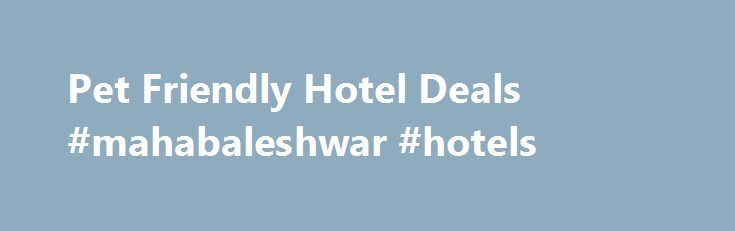 Pet Friendly Hotel Deals #mahabaleshwar #hotels http://hotel.remmont.com/pet-friendly-hotel-deals-mahabaleshwar-hotels/  #cheap motel.com # Pet Friendly HotelsPet Friendly Hotels Pet Friendly Hotel Discounts If you are traveling with a pet and you are looking for a pet friendly hotel that offers great rates, you are in the right place. Motel.com offers discounted hotel rates at pet friendly hotels. We have identified places to stay in most […]