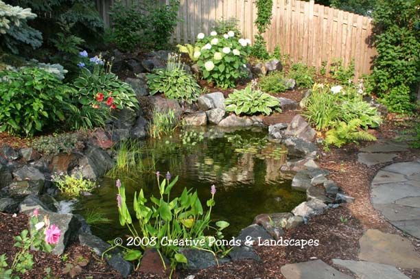 34 Best Landscaping Images On Pinterest Backyard Ideas Garden Ideas And Backyard Ponds