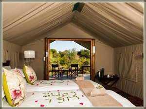 Luxury Tent Accommodation - Simbavati River Lodge, South Africa