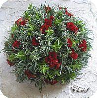 Met bladeren van de witte abeel bloemstukjes maken zoals bladapplicaties, kransen, bloemstukjes graf, herfststukje,...