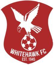 1945, Whitehawk F.C. (East Sussex, South East England, England) #WhitehawkFC #UnitedKingdom (L15062)