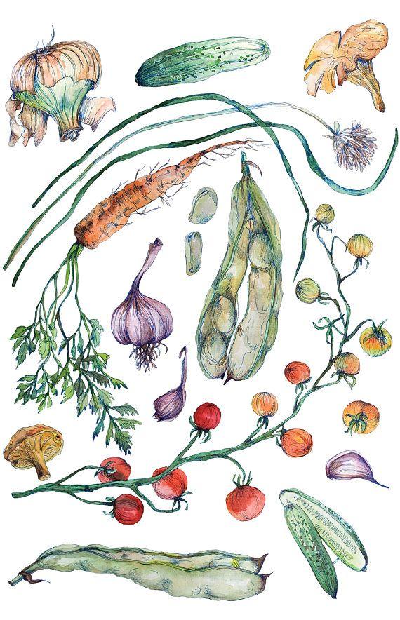 Art Print of original Watercolor painting    Garden