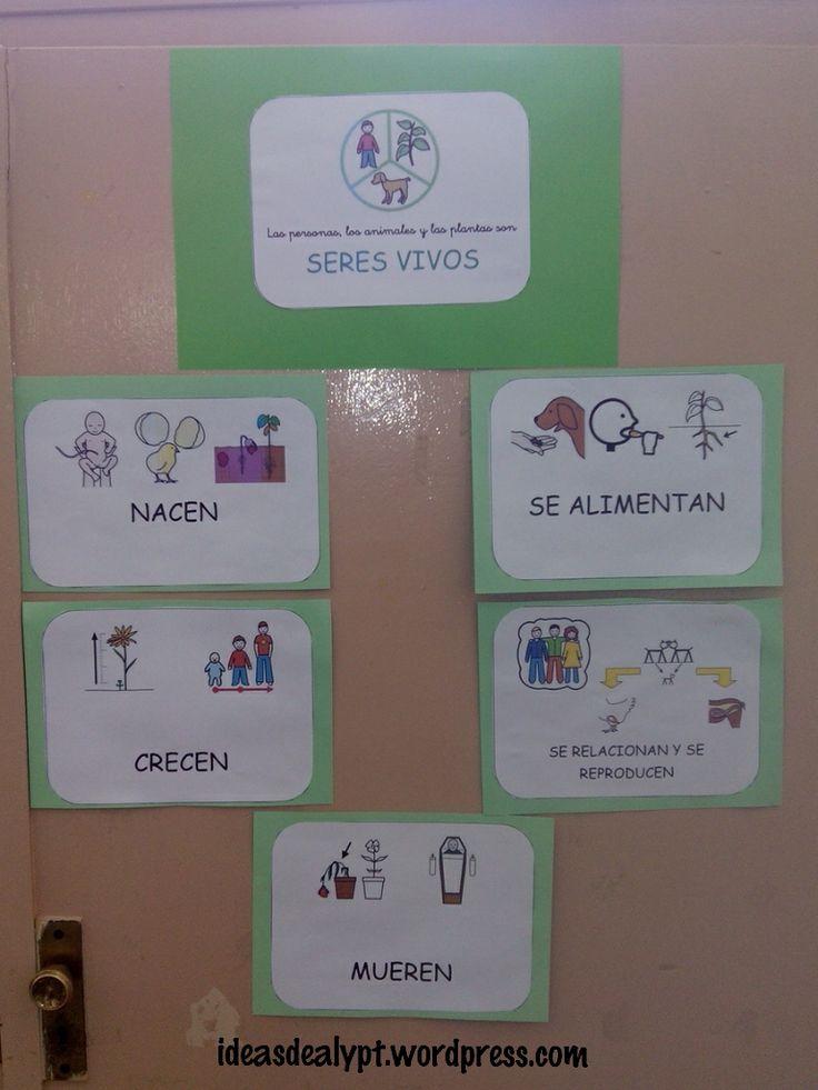 Los apoyos visuales son muy importantes para la asimilación de los aprendizajes. Por eso es fundamentalhacer uso de este recurso en el aula y decorarla con cosas que le ayuden a los niños a...