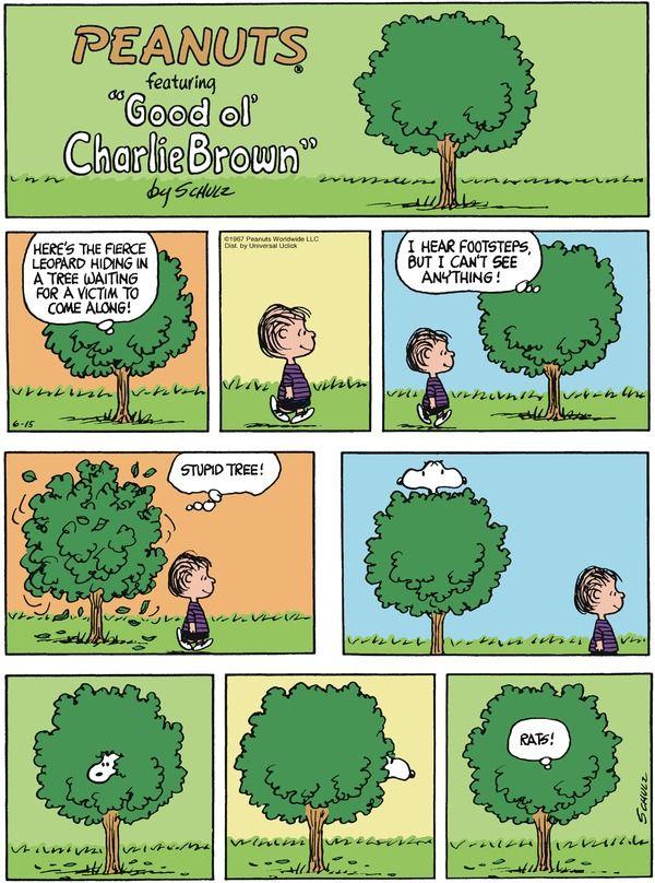 comic strip penuts linus