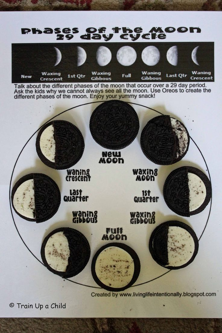 Oreo Cookies To Teach The Phases Of The Moon Cc Cycle 1