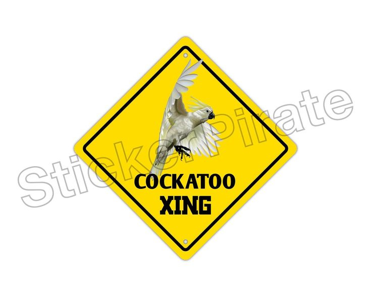 "Aluminum Cockatoo Crossing Funny Metal Novelty Sign 12""X12"""