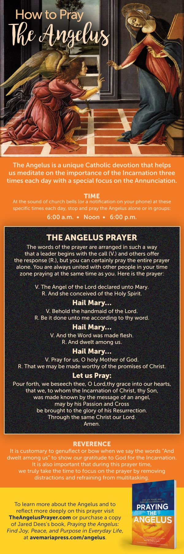 How to Pray the Angelus [Infographic] - Inspired by Praying the Angelus: Find Joy, Peace, and Purpose in Everyday Life by Jared Dees