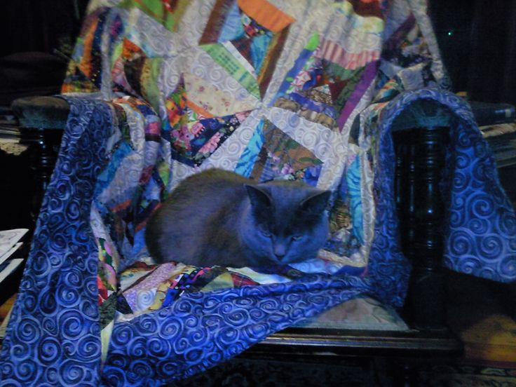 This is what its all about making my cat Phlox comfortable on my quilt on the rocking chair in front of the fire.