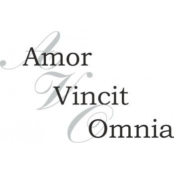 amor vincit omnia english quotes. Black Bedroom Furniture Sets. Home Design Ideas