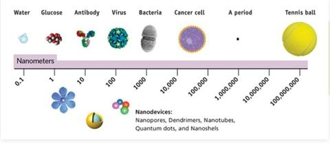 a study of nanotechnology For the first time, new research has identified how shape affects nanoparticles' ability to move through intracellular barriers.