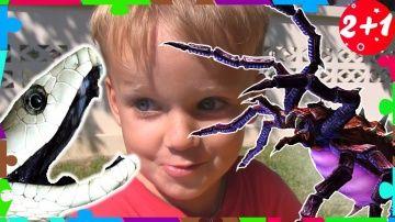 ИГРАЕМ ВМЕСТЕ! Змея и Гигантский Паук Напал на Детей ДЕТИ ПОДРУЖИЛИСЬ С ПАУКОМ И ЗМЕЁЙ Attacks Kids http://video-kid.com/20890-igraem-vmeste-zmeja-i-gigantskii-pauk-napal-na-detei-deti-podruzhilis-s-paukom-i-zmeyoi-attack.html  Гигантский паук и змея напили на детей и подружились с ними! Дети играют с пауком в прятки. Сказка на ночь, маленькая страшилка! Может ли быть атака паука на ребенка, давайте посмотрим!ИГРАЕМ ВМЕСТЕ! Змея и Гигантский Паук Напал на Детей ДЕТИ ПОДРУЖИЛИСЬ С ПАУКОМ И…
