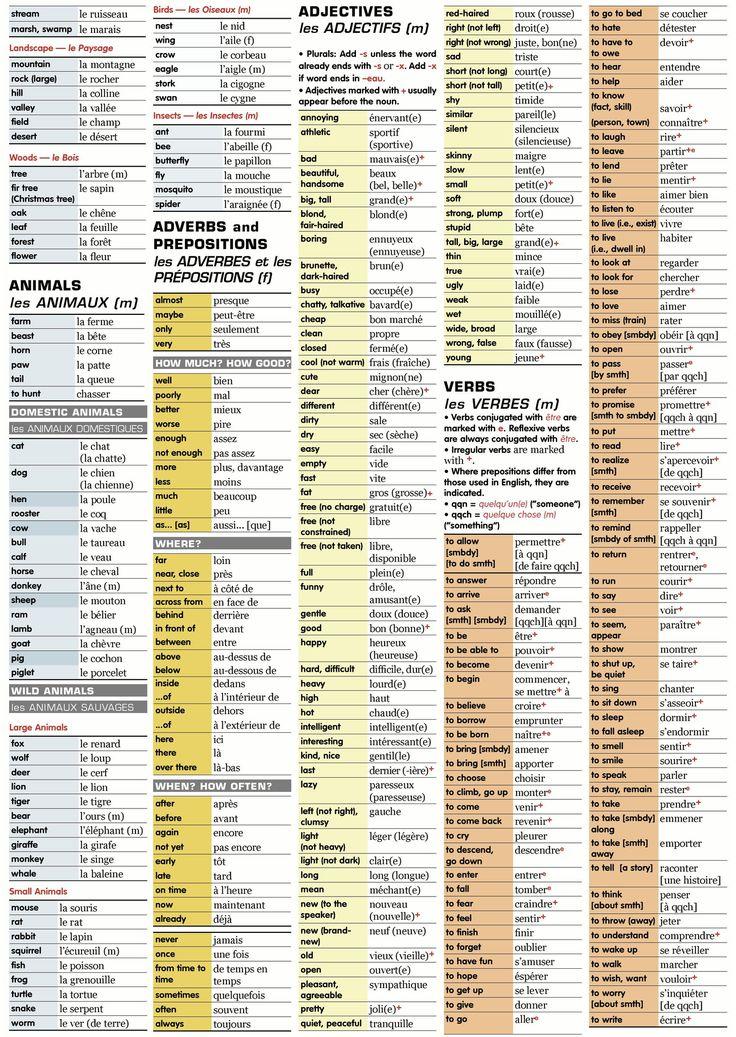 Frencg grammar and vocab
