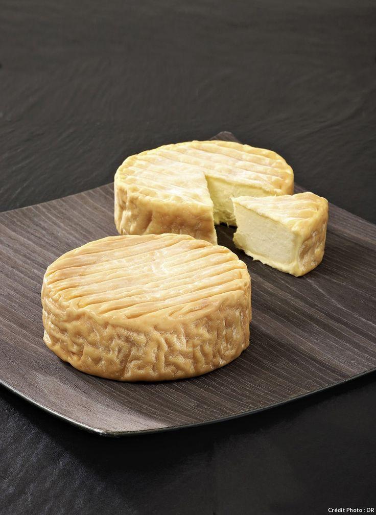 L'époisses, le régal des fromagers - Ce fromage de caractère, affiné au marc de Bourgogne, a failli disparaître dans les années 1950. Il doit sa survie à la passion du couple Berthaut. Grâce à eux, l'époisses brille de nouveau sur les tables de toute sa croûte cuivrée.