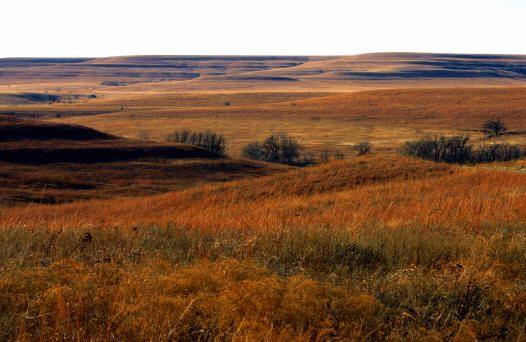 Winter on the Tallgrass Prairie Preserve, Osage County, Oklahoma    Photo by John Kennington