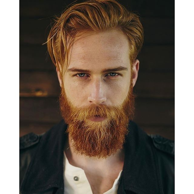 gray hair styles for men best 25 beard ideas on why hair in 6879 | 731778f1e4287a1515775a6879f88081 red beard blue eyes
