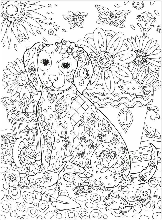 hard cat design coloring pages - photo#17