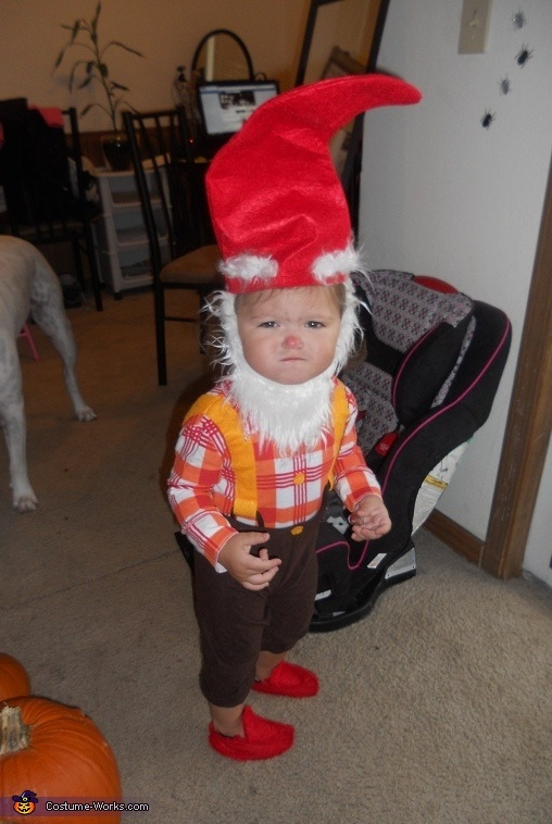 Baby Gnome: 17 Best Images About Halloween Costumes On Pinterest