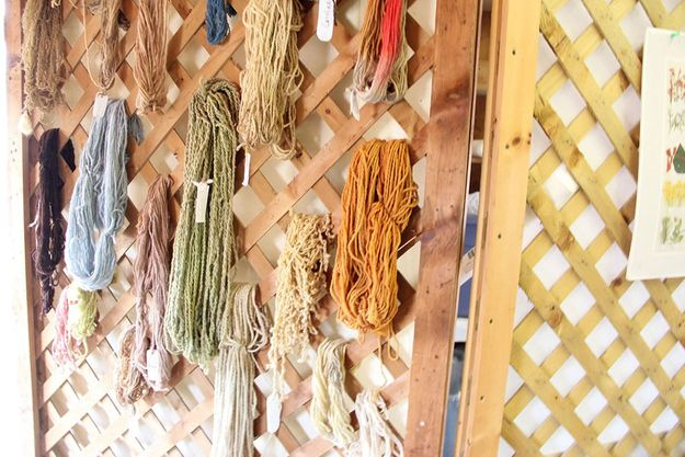 Lots of yarn: | 32 Things You'll Find At A Sheep And WoolFestival