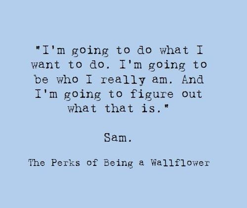 the perks of being a wallflower (sam). This was my senior quote in