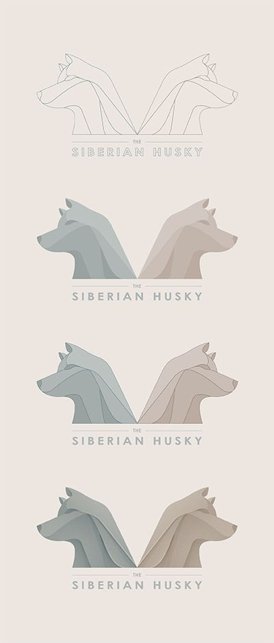 Making of The Siberian Husky. Design by Yoga Perdana.