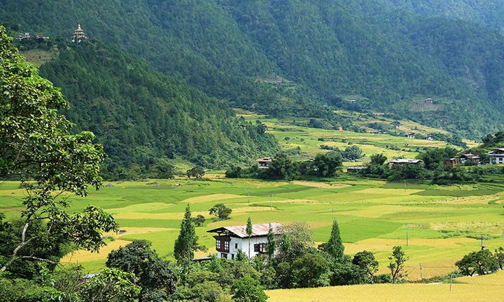 If you want to visit Bhutan, We provide travel guide, travel agents and cheap travel packages in Bhutan for your Help.  Now your dream comes true, enjoy your journey.