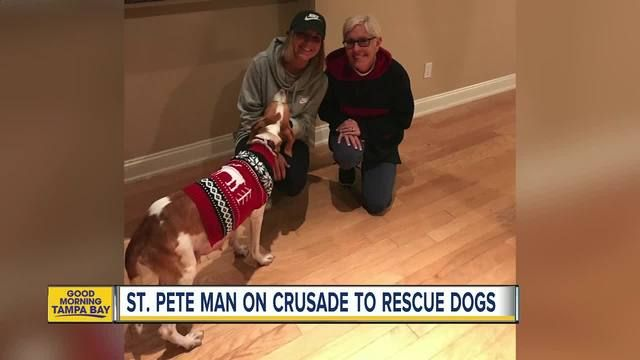St. Petersburg animal activist helps pregnant dog in amazing rescue in crusade to save dogs https://www.abcactionnews.com/news/region-south-pinellas/st-petersburg/st-petersburg-animal-activist-helps-pregnant-dog-in-amazing-rescue-in-crusade-to-save-dogs