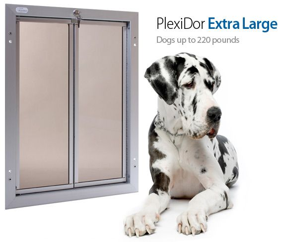 Beau PlexiDor XL, Dog Door For Pets Up To 220 Pounds