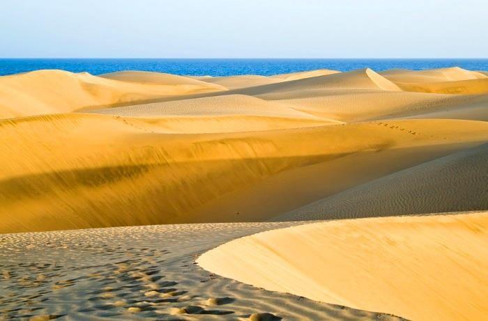 Fuerteventura (Canary Islands, Spain).