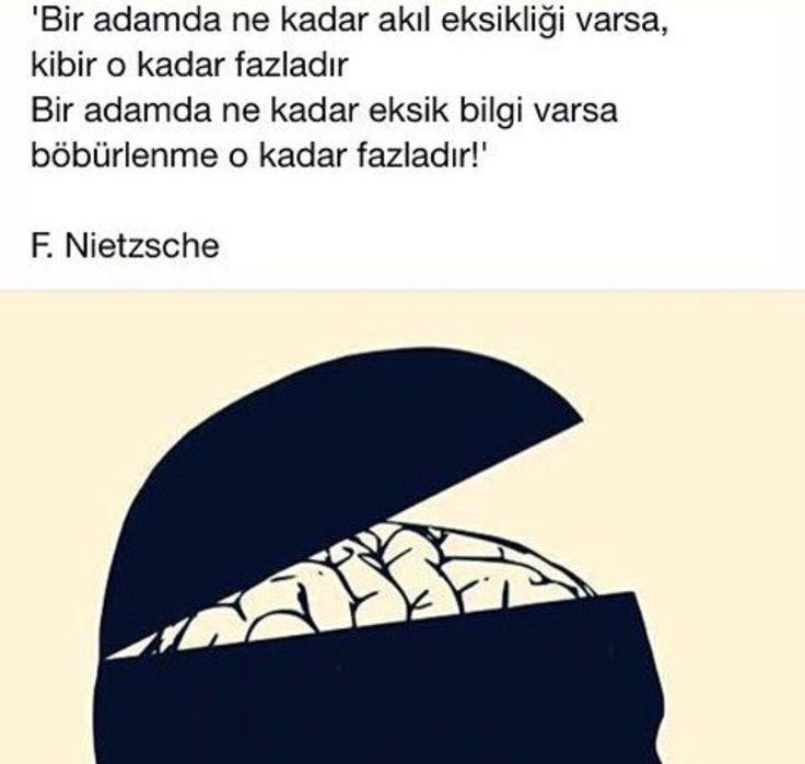 Bir insanda Akıl eksikliği fazla ise, kibir de fazla.. Nietzsche sözleri