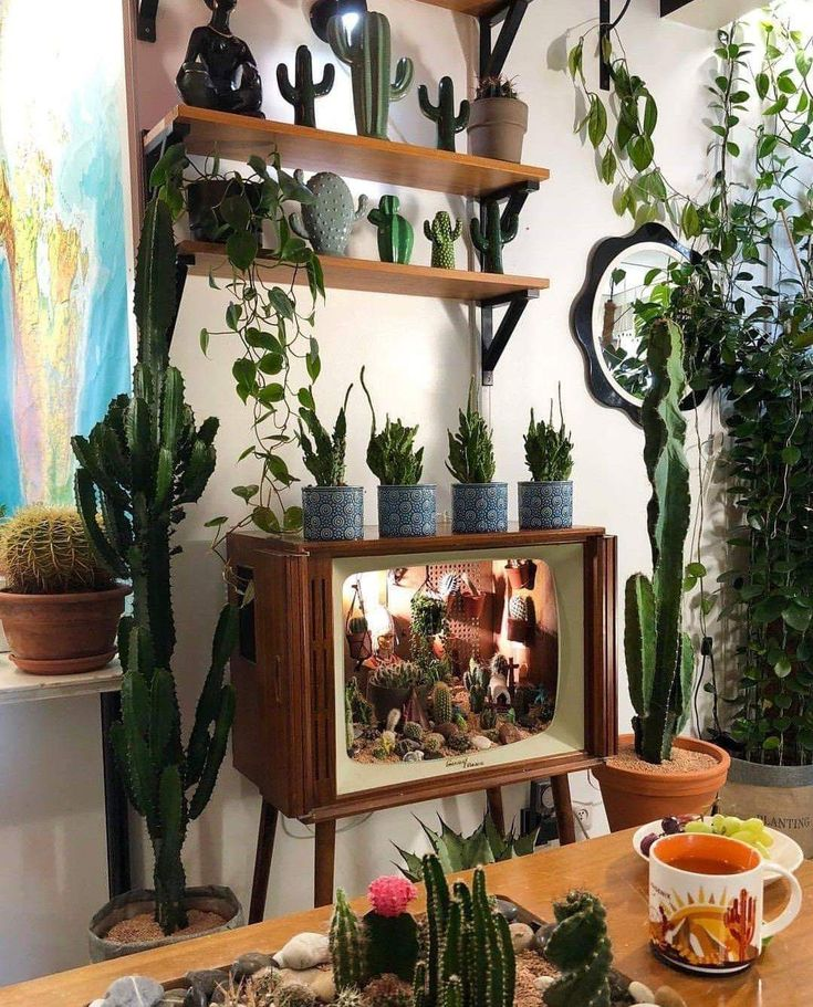 Love the idea of an old television as a succulent …