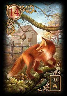Saiba e aprenda mais sobre as combinações das cartas do Baralho Cigano Lenormand e aprofunde seus conhecimentos na carta Raposa.