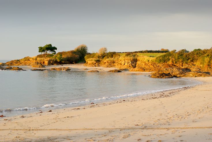 Baie de Lancieux (22)