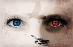 Psychopathe vs Empathe:Êtes-vous en train de vous battre pour votre réclusion comme si c'était votre salut?Alors, il se peut que vous ayez été dupé. Vous
