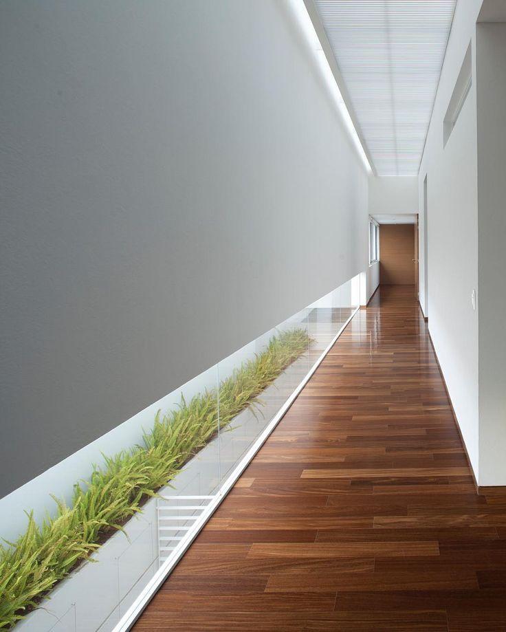 FF House by Hernandez Silva Arquitectos. (2012) Location: #Zapopan #Jalisco…