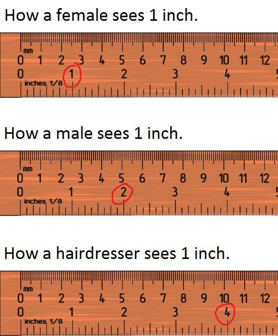 perception- hahaWomen View, Funniest Quotes, Things Funny, Funny Boards, Inch Funny,  Ruler, Funny Stuff, Hair Funny, Rules